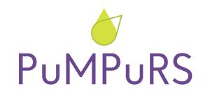 Pumpurs_midi_ar_malam